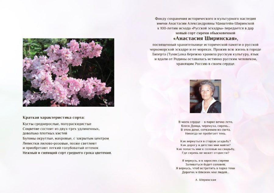 сертификат Ширинская3-2